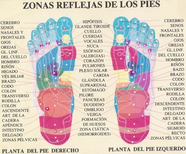 mapa reflexología almohadillas para pies