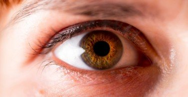 La máscara del jugo del aloe de las arrugas alrededor de los ojos