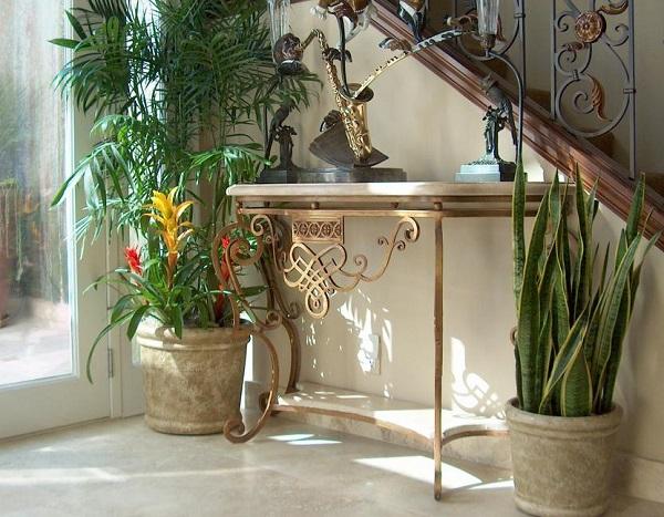 5 plantas de poca luz y f ciles de cuidar for Plantas de interior muy duraderas