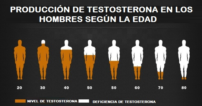 testosterona niveles