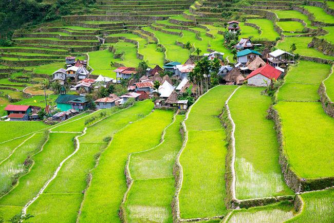 Las terrazas de arroz en Filipinas