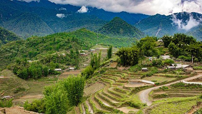 Montaña campos de arroz en Laos