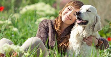 La compañia de un perro no necesita de palabras 3