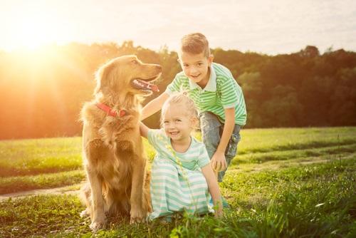 Una familia disfrutando de un paseo con su perro