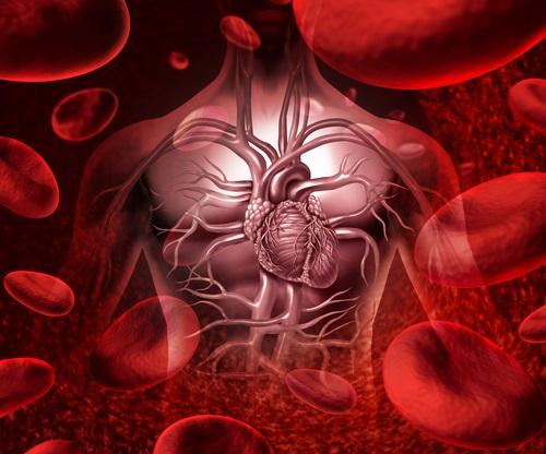 Repercusiones de la soledad sobre las enfermedades del corazón