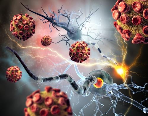 cerebro afectado por infeccion bacteriana