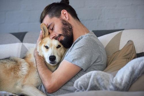 abrazos con un perro