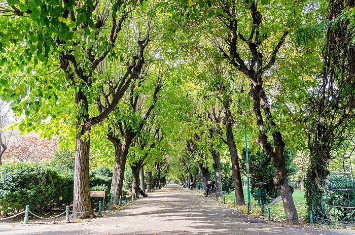 Parque en Bucarest