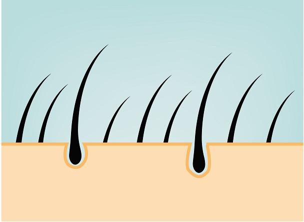 El cuero cabelludo sano permite crecer un pelo mucho más sano