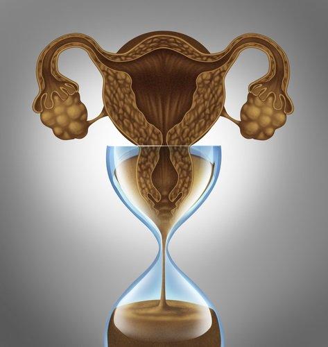 cómo uso la copa menstrual