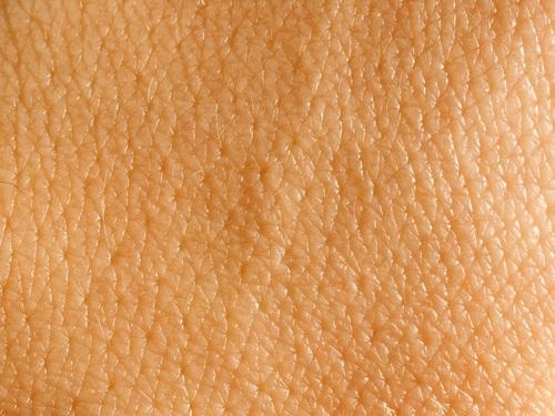 Imagen que muestra piel saludable
