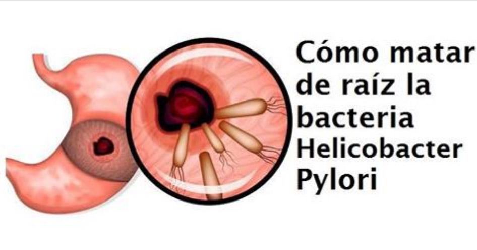 Dieta para eliminar el helicobacter pylori pdf
