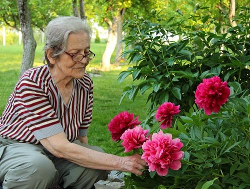 ejercicios de jardinería