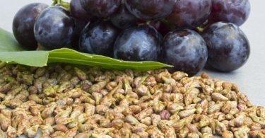 poder-anticancerigeno-de-las-semillas-de-uvas-3