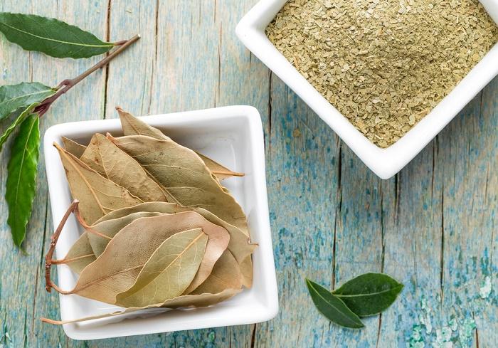 repeler-cucarachas-con-hojas-de-laurel