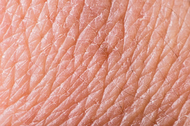 Equilibra tus hormonas y consigue rejuvenecer la piel y el