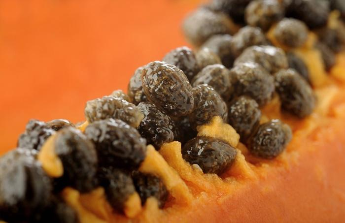 Cómo usar la semilla de papaya para eliminar parásitos intestinales