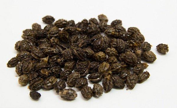 semilla-de-papaya-secas