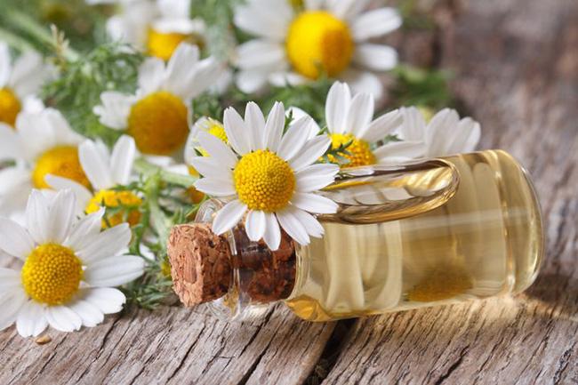 Aceite de manzanilla para aliviar el dolor muscular