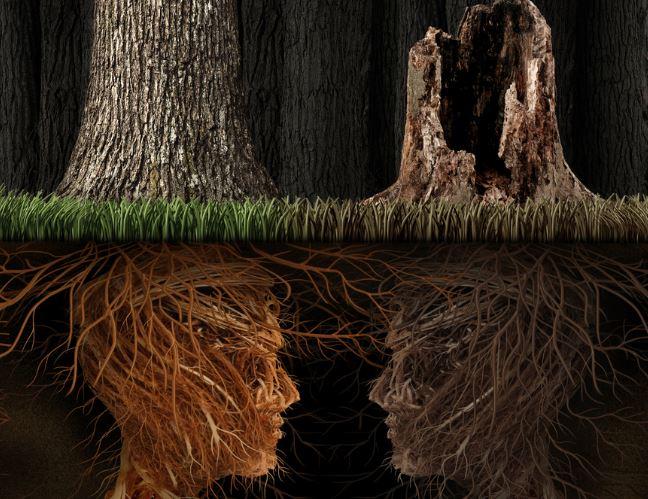 Ilustración pareja que tienen metas diferentes y crecimiento distinto