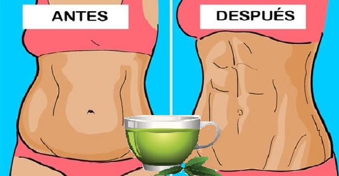 se puede perder peso tomando te verde