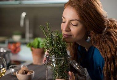 Inciensos y hierbas para eliminar los insectos