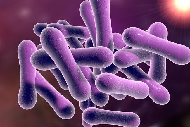 síntomas asociados a la difteria