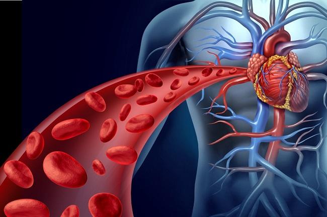 caminata diaria apoya la salud del corazón