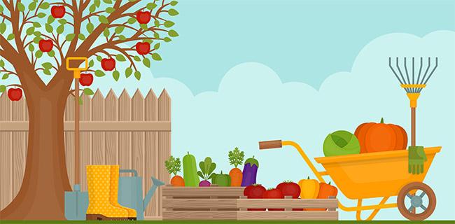 Huerto en casa y los alimentos más fáciles de sembrar