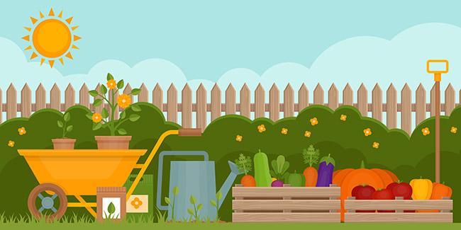 Gráfico que enseña los cultivos fáciles de sembrar en un huerto reducido