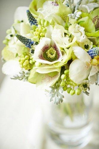 jardín sano con bicarbonato de sodio en flores