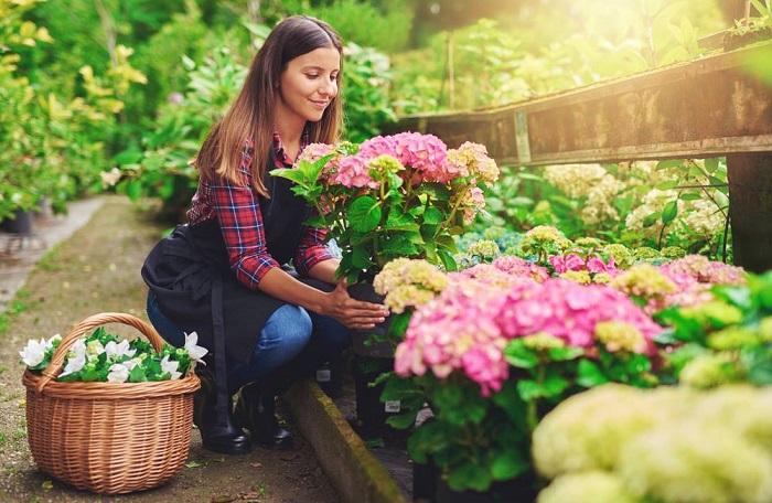 Porqu hacer jardiner a es excelente para la salud - Imagenes de jardineria ...