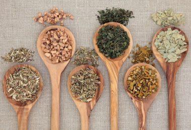 Las mejores hierbas que ayudan a bajar de peso