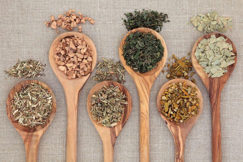 10 hierbas para perder peso y mejorar tu silueta Hierbas para bajar de peso y quemar grasa