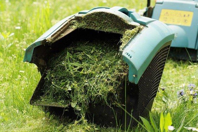 pasto cortado para fertilizante natural