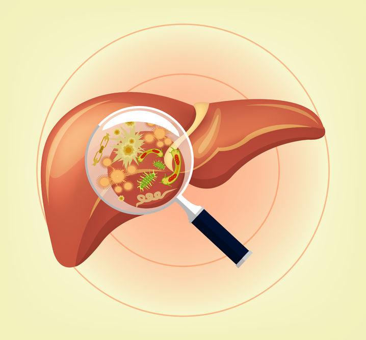 Signos de que debes depurar el hígado