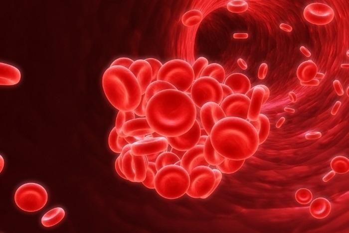 coágulos de sangre