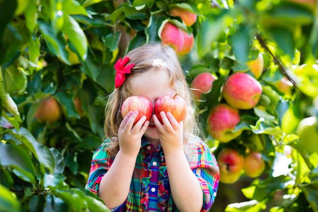 niña entre los frutos del árbol frutal