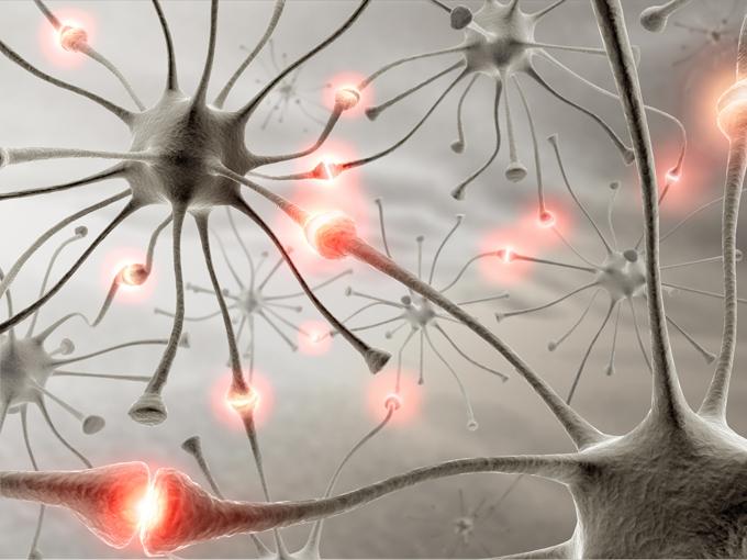 los beneficios de caminar para la salud del cerebro