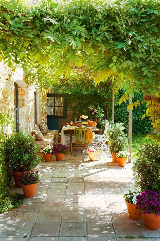 enredaderas en el jardín con una mesa para reuniones