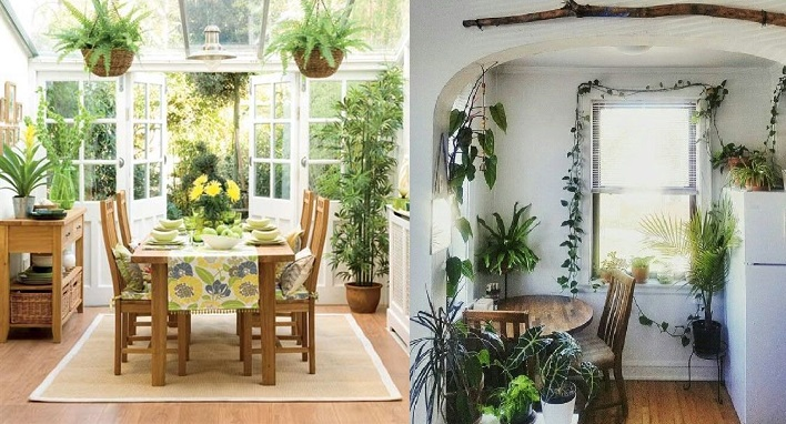 8 plantas para decorar la cocina que dar n productividad for Decoracion con plantas en living