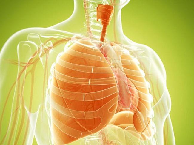 pulmones más limpios cuando se deja de fumar