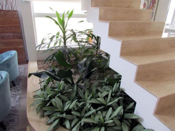 jardín verde debajo de la escalera con luz natural