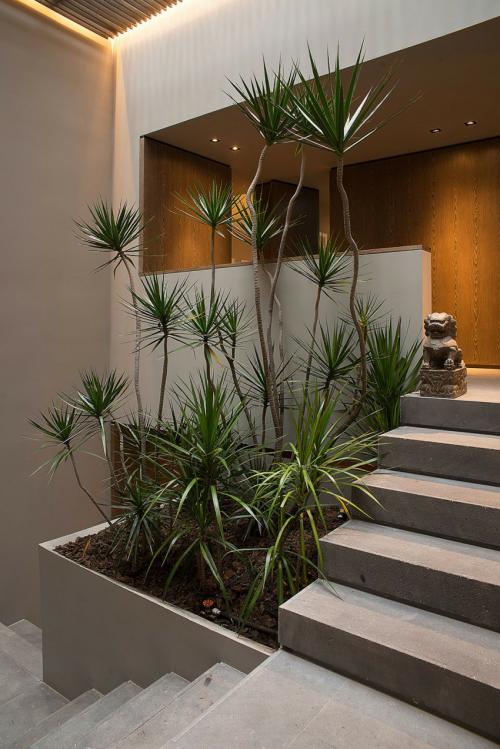 jardn iluminado debajo de la escalera a base de palma