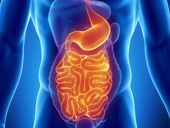 reduce los problemas gastrointestinales con estos alimentos
