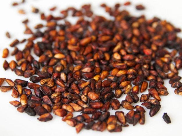 semilla de granada para parásitos internos