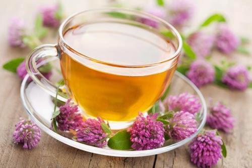 una taza de té de valeriana para la ansiedad