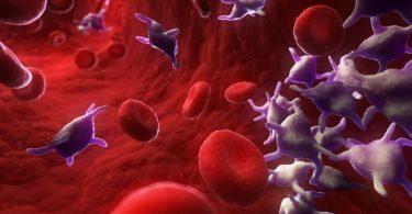 hemograma para analizar la sangre