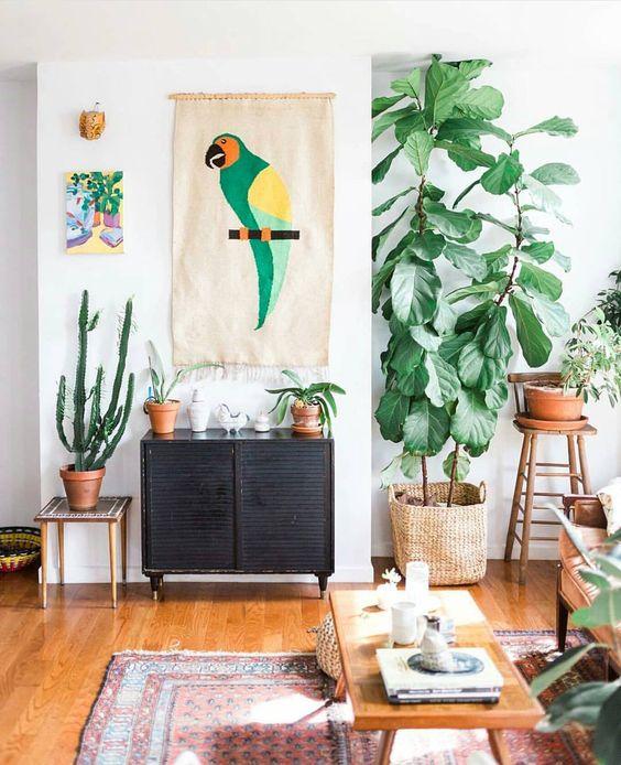 sala de estar con árbol ficus