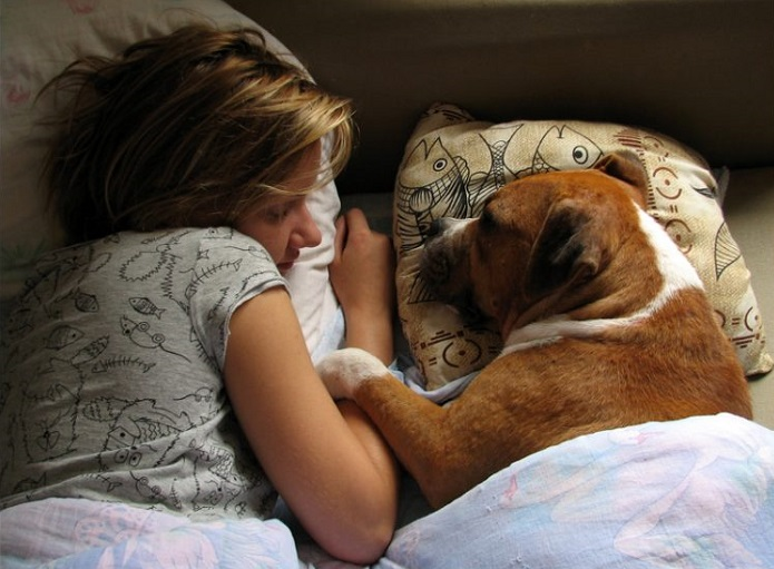 dejar al perro dormir en la cama
